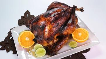 Mojo Turkey