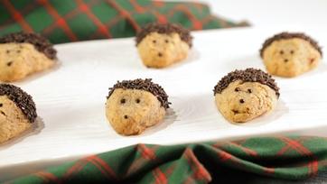 Hedge Hog Pecan Shortbread Cookies