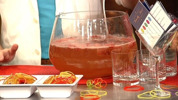 Clinton Kelly\'s Strawberry White Wine Cooler Punch