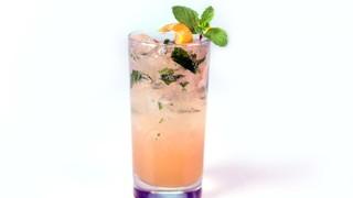 Grapefruit Mojito Mocktail