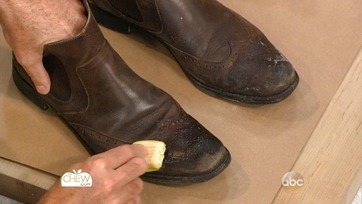 Banana Peel Shoe Shine