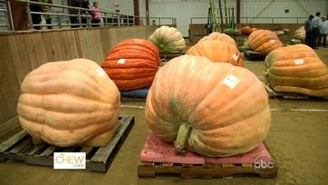 The Great Pumpkin Fair
