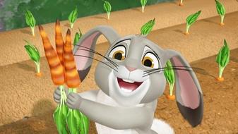 Music Video: Blue Ribbon Bunny