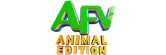 AFV Animal Edition