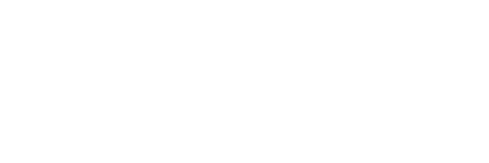 Your Voice, Your Vote 2020