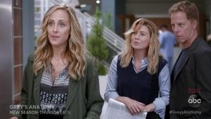 Greys Anatomy Watch Series