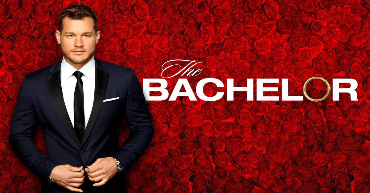 The Bachelor Video Clips