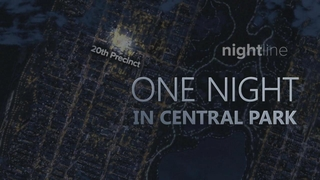 Nightline: 05/24/19: 1989 Central Park Jogger Rape Case Causes Frenzy in Media Watch Full Episode | 05/24/2019