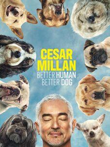 Cesar Millan: Better Human Better Dog