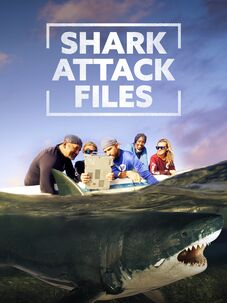 Shark Attack Files