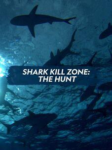 Shark Kill Zone: The Hunt