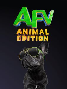 America's Funniest Home Videos Animal Edition