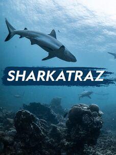 Sharkatraz